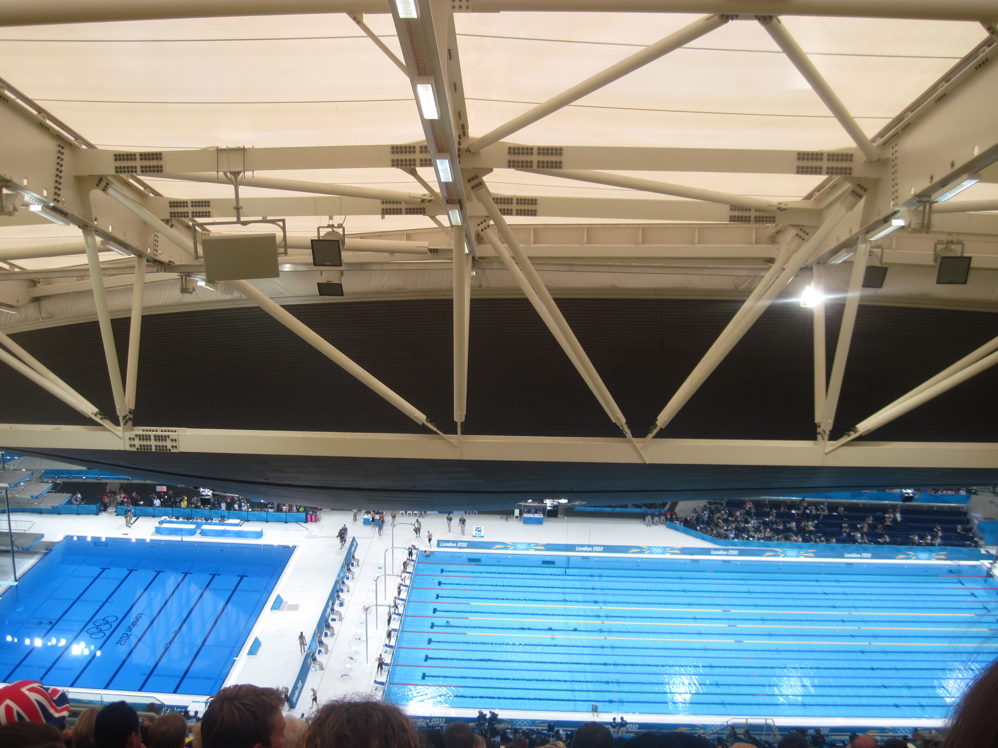 Olympics Being There Swimming
